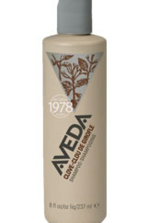 Aveda Vintage Clove Shampoo