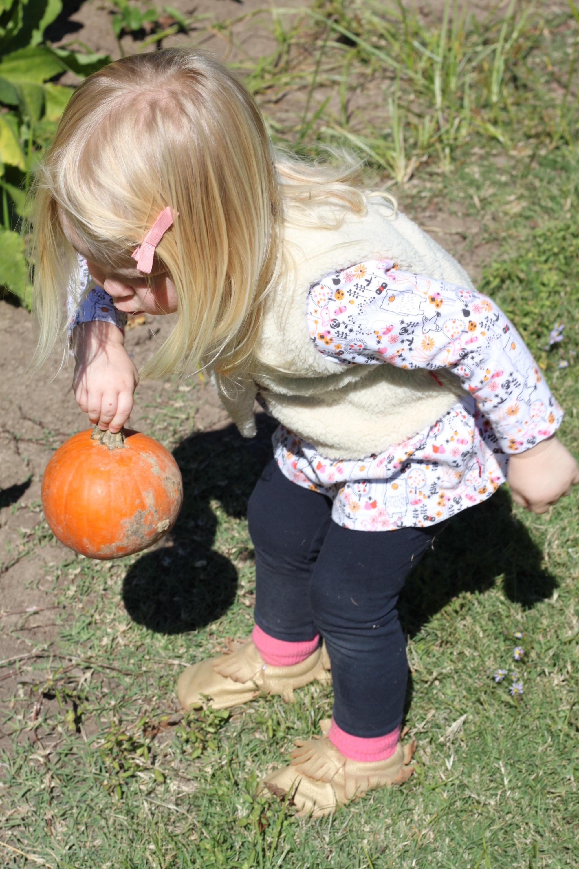 little L with pumpkin
