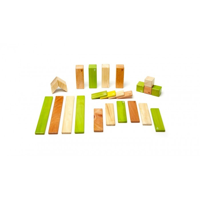 Tegu_toddler_toy